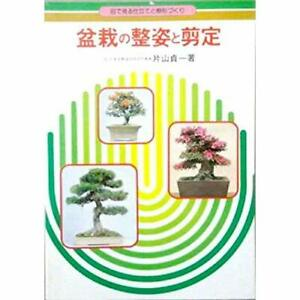 Bonsai-of-Seisugata-and-pruning-to-shape-tailoring-and-tree-to-see-with-the-ey