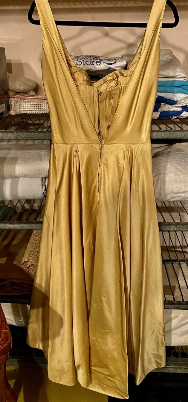 Gorgeous Vintage CEIL CHAPMAN satin dress - image 3