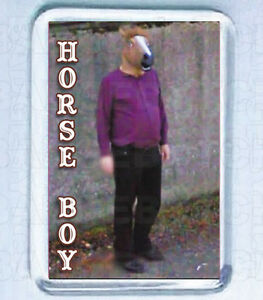 HORSE BOY SMALL FRIDGE MAGNET - The Street View Mystery!