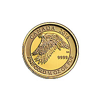 Lot of 4 x 1/4 oz 2016 Canadian Snow Falcon Gold Coin