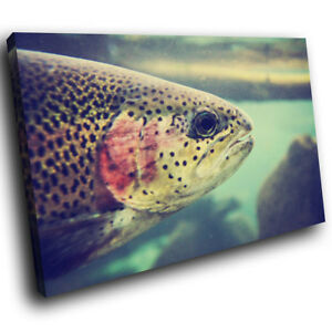 Underwater-Salmon-Fish-Funky-Animal-Canvas-Wall-Art-Large-Picture-Prints