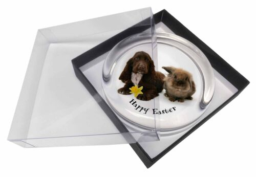 'Happy Easter' Dog+Rabbit Glass Paper in Gift Box Christmas P, ADSC7DA1PW