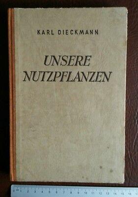 Bauer Nutzpflanzen 1951 Getreide Kartoffel Erbsen Wiese Klee Raps Mohn Hanf Kohl Fotos