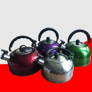3-L-Edelstahl-Pfeifen-Tee-Wasserkocher-Wasser-Topf-Hitze-Kessel-Griff-Neu-W0P7