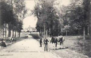 78-cpa-Foret-de-SAINT-GERMAIN-Avenue-des-Loges