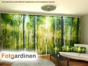 fotogardinen wald schiebevorhang schiebegardinen 3d fotodruck auf ma. Black Bedroom Furniture Sets. Home Design Ideas