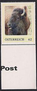 (D) 019 Wildtiere - BISON Postfrisch MNH - Graz-Liebenau, Österreich - (D) 019 Wildtiere - BISON Postfrisch MNH - Graz-Liebenau, Österreich