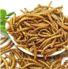 Dried Mealworms Bulk Non-GMO Organic for Wild Blue Bird Food Chickens Hen Treats