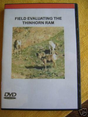 Field Evaluating the Thinhorn Ram