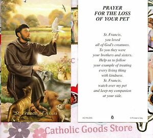 Details about St  Francis of Assisi - Prayer for the Loss of your Pet -  Paperstock Holy Card