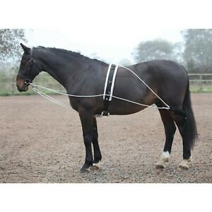 p-Shires-Horse-pony-Lunging-Training-Aid-Rope-amp-Pulley-System