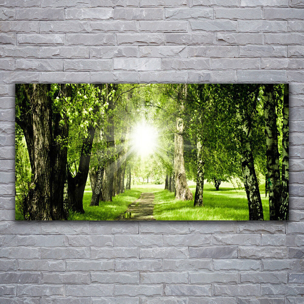 Impression sur verre Wall Art 120x60 Photo Image Forêt Sun Sentier Nature