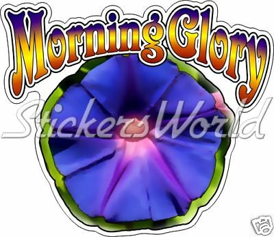 Calcomanía Gráfico Morning Glory Flor 160mm Vinilo Pegatina