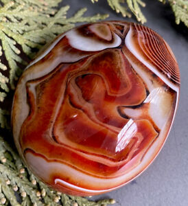 165g STRIKING MADAGASCAR BANDED RIVER AGATE CRYSTAL POLISHED HEALING ROCK Reiki