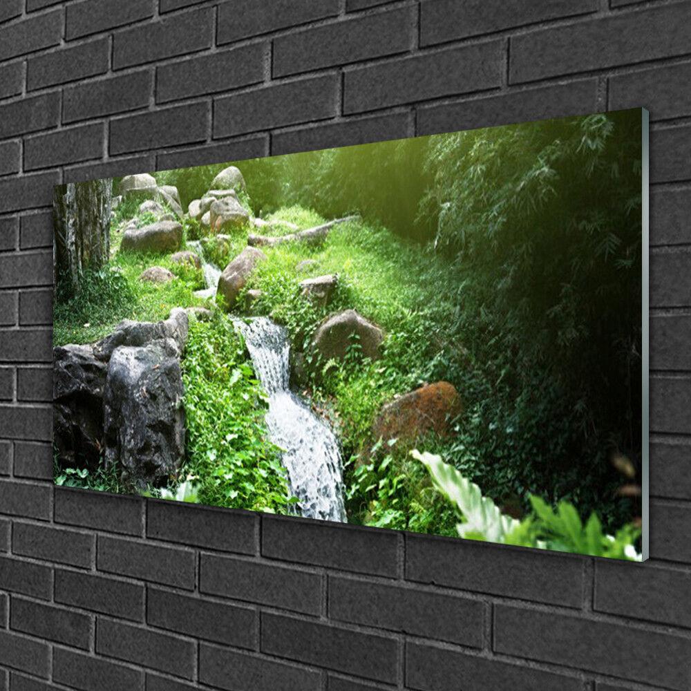 Image sur verre Tableau Impression 100x50 Nature Ruisseau Herbes Pierres