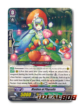 Cardfight Vanguard  x 4 Maiden of Physalis - BT14/100EN - C Mint