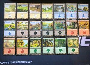 20-Basic-Land-Lot-Lorwyn-1x-of-each-art-SP-NM-Magic-MTG-FTG