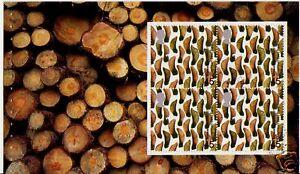 GREAT-BRITAIN-2000-TREASURY-OF-TREES-SYCAMORE-PANE-FINE-USED