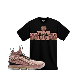 buy popular 63948 84ab4 We Will Fit shirt to match Nike LeBron 15 All-Star Hollywood ...