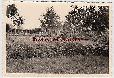 (f12182) Orig. Foto älterer Herr Steht Im Garten, 1930er Spezieller Kauf