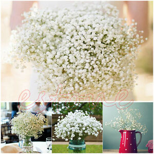 Gypsophila-Baby-039-s-Breath-Artificial-Fake-Silk-Flower-Plant-Home-Wedding-Decor-EH