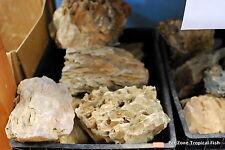 5LBS Ohko Dragon Stone - Rock ADA Aquarium Fish Plant Shrimp Driftwood Aquascape