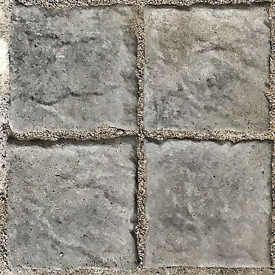 """Lions Head plus 20pc 6""""x6"""" Tumbled Stone Concrete Molds"""