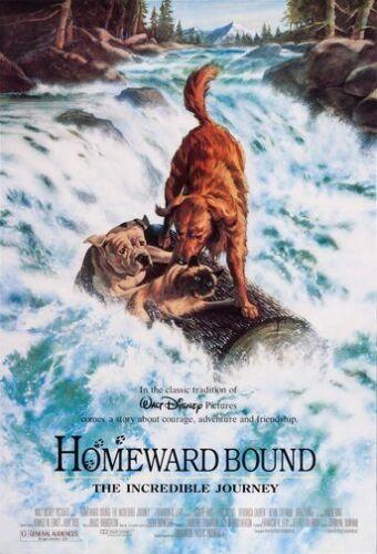 Homeward Bound Movie Poster 24in x 36in