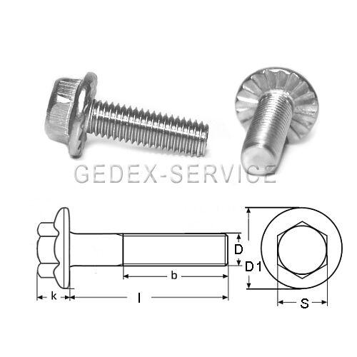 10 Stück Sechskantschrauben DIN 6921 M6x16 Flansch mit Verzahnung EDELSTAHL A2
