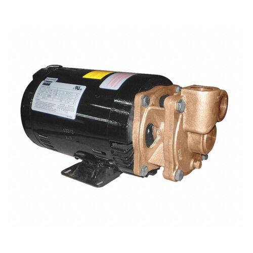 """Dayton Bronze Turbine Pump 1.5 HP 208-230//460V 1/"""" Inlet//Outlet 4JPE5"""