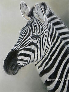 Zebra-African-Art-Print-034-All-Ears-034-8x10-Giclee-Image-by-Realism-Artist-Roby-Baer