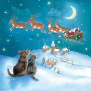 Starry-Night-Dog-amp-Cat-Santa-Sleigh-Reindeer-10-pk-small-square-Christmas-cards