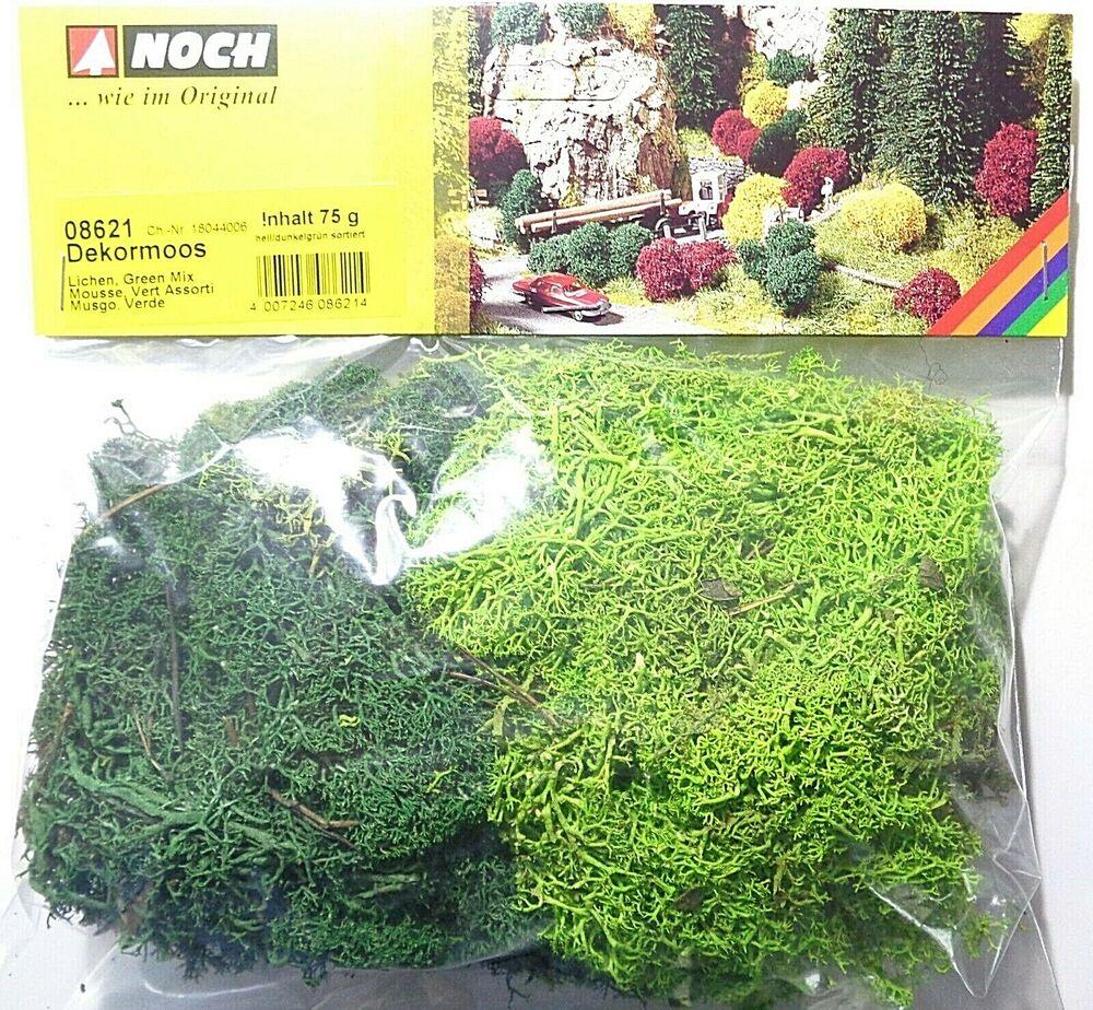 encore 07080 Wildgras Vert foncé hauteur 6 mm 50 g streugras Static Herbe 13,98 €//100 g