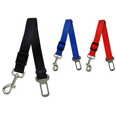 Sistematico 1 X Animale Domestico Tocco Cintura Di Sicurezza Sistema Ritenuta Random Colore Ampia Fornitura E Consegna Rapida
