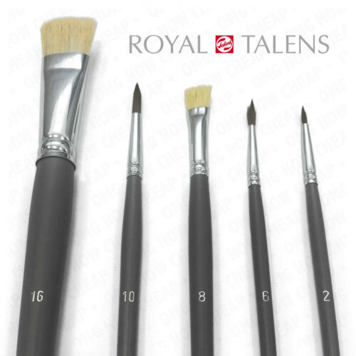 Multi-Media Brush Set Pack Hog Hair /& Pony Hair 5 Piece Set by Royal Talens