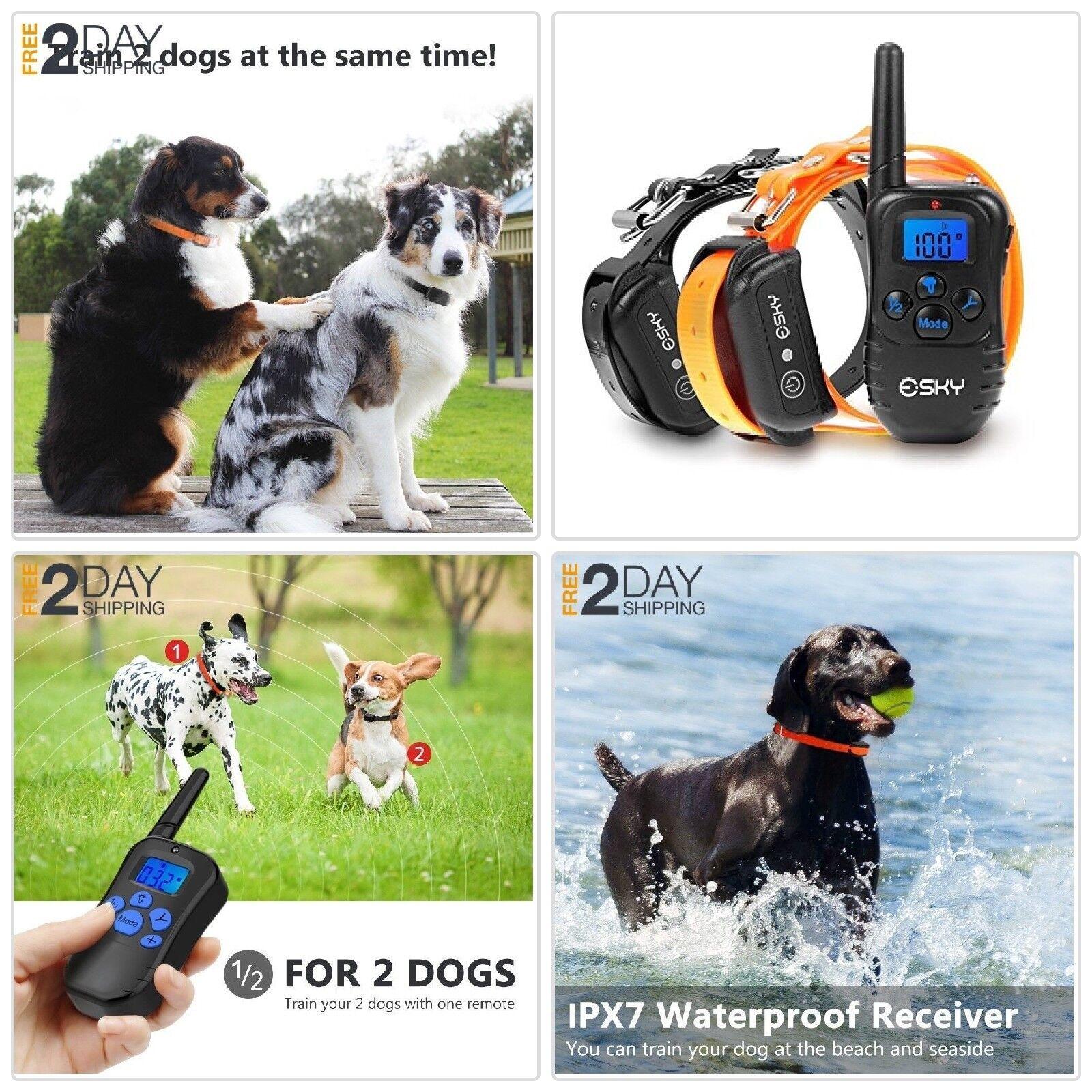 Best 2 Collares LCD Para Entrenamiento de Perros Recargables y a Prueba de Agua