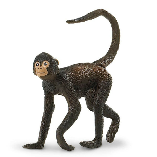 Spider Monkey Primate Safari Ltd 291629 Rainforest Wild Animal