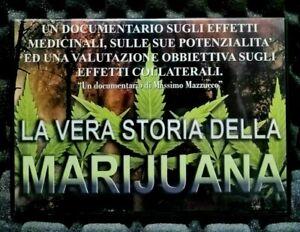 La-vera-storia-della-marijuana-DVD-Documentario-Massimo-Mazzucco-Film-Italiano