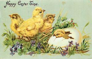 DB-Embossed-Postcard-K279-Happy-Easter-Time-Chicks-Violets-Tuck-Cancel-1908
