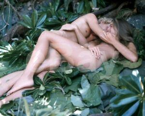 The-Blue-Lagoon-1980-Christopher-Atkins-Brooke-Shields-10x8-Photo