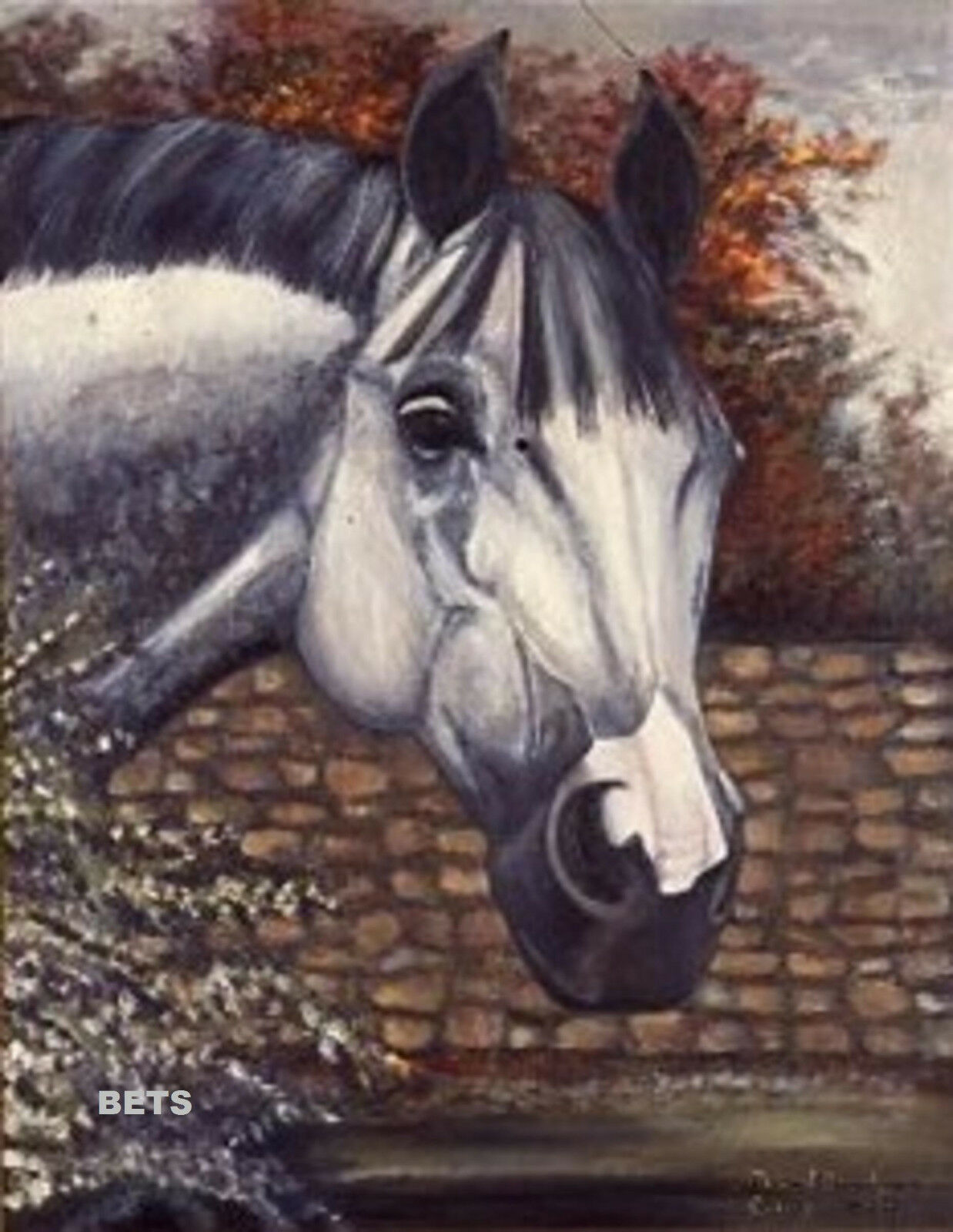 HORSE PRINT Giclee GREY Horse AMERICA  by artist BETS 4 COLORS print size 12 X 16  order now enjoy big discount