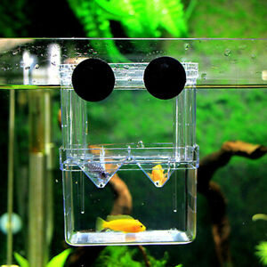 Aquarium-Fischzucht-Isolation-Haengen-Aquarium-Zubehoer-Inkubator-Tank-Box