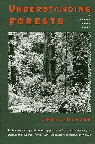 Understanding Forests
