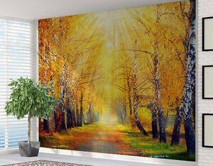 Otono Luz Del Sol Brillante En Bosque Papel Pintado Foto Mural Para