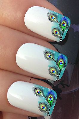 NAIL ART SET #382 x12 PEACOCK FEATHER FRENCH TIPS WATER TRANSFER DECALS STICKERS