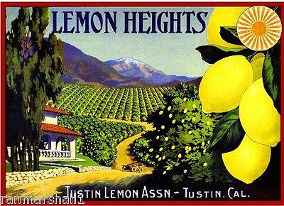 Tustin Lemon Heights Brand Lemons Lemon Citrus Fruit Crate Label Art Print