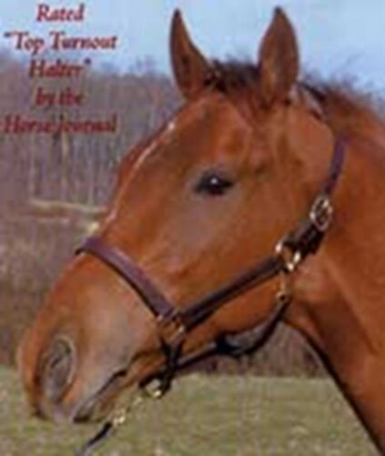 Thornhill Pro Leather Halter (pony)