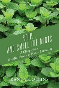 Stop-and-Smell-the-Mints-A-Glimpse-into-the-Mint-Family-of-Plants-Lamiaceae