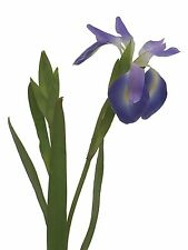 """Artificial Silk Flower Iris spray, 28.5"""", Lavender color, selling by 3 stems lot"""