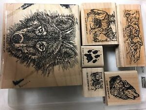 Stampin Up WOLF Set of 6 Rubber Stamps - Howling Running Pack Cubs Retired Lot